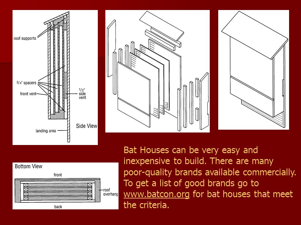Bat Houses can be very easy and inexpensive to build. There are many poor-quality brands available commercially. To get a list of good brands go to ww
