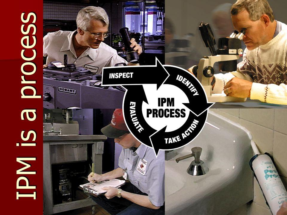 IPM is a process