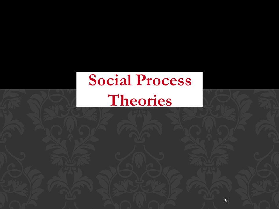 36 Social Process Theories