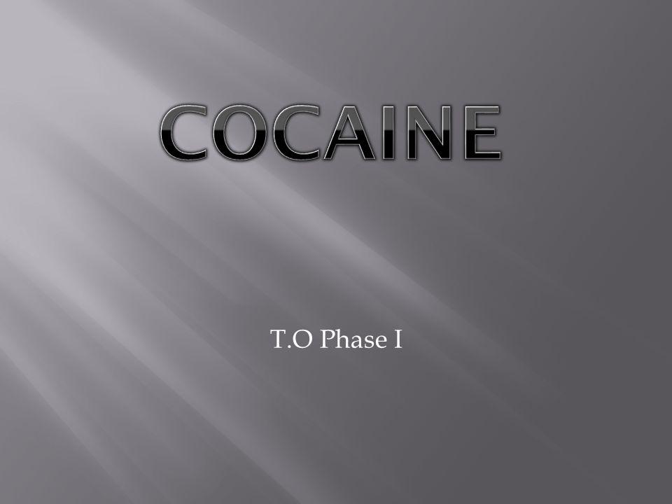 T.O Phase I