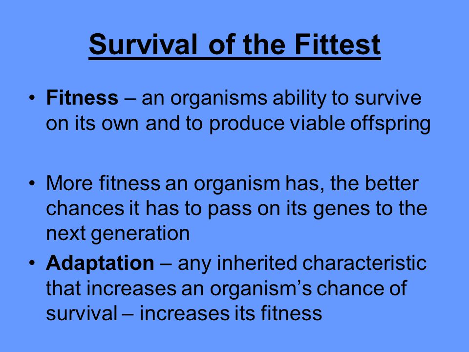 Survival of the Fittest Fitness – an organisms ability to survive on its own and to produce viable offspring More fitness an organism has, the better chances it has to pass on its genes to the next generation Adaptation – any inherited characteristic that increases an organism's chance of survival – increases its fitness