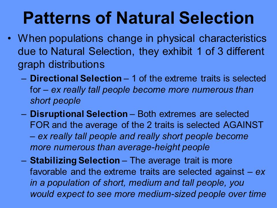 Patterns of Natural Selection When populations change in physical characteristics due to Natural Selection, they exhibit 1 of 3 different graph distri