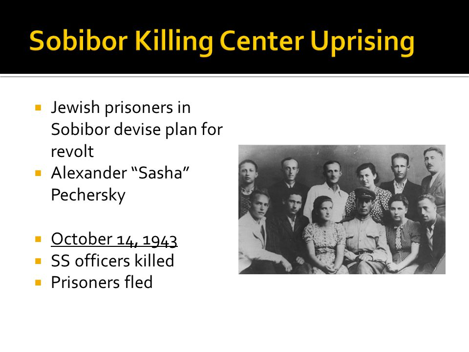  Jewish prisoners in Sobibor devise plan for revolt  Alexander Sasha Pechersky  October 14, 1943  SS officers killed  Prisoners fled