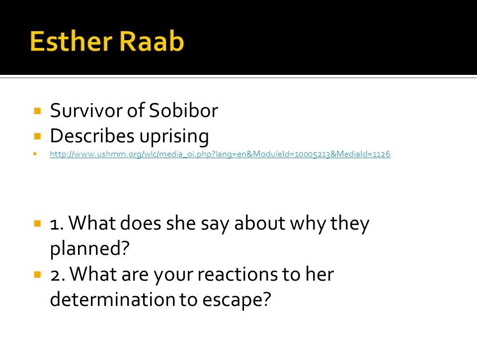  Survivor of Sobibor  Describes uprising  http://www.ushmm.org/wlc/media_oi.php lang=en&ModuleId=10005213&MediaId=1126 http://www.ushmm.org/wlc/media_oi.php lang=en&ModuleId=10005213&MediaId=1126  1.