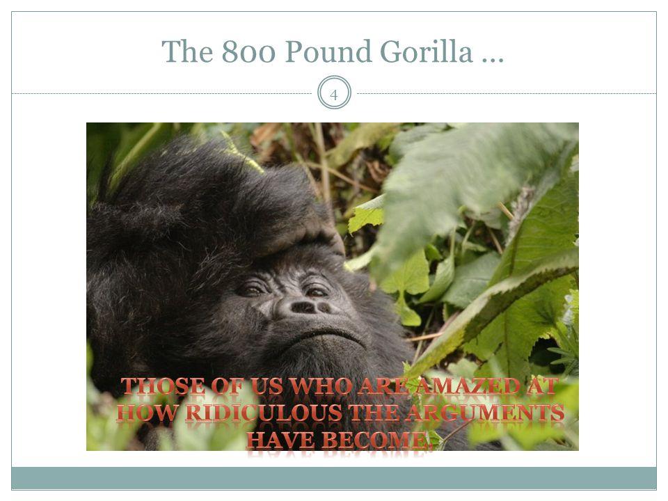 The 800 Pound Gorilla … 4