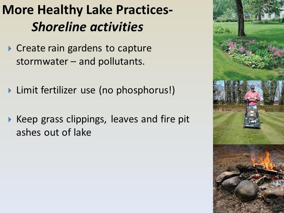 More Healthy Lake Practices- Shoreline activities  Create rain gardens to capture stormwater – and pollutants.  Limit fertilizer use (no phosphorus!