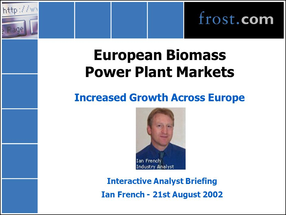 European Biomass Power Plant Markets Increased Growth Across Europe Interactive Analyst Briefing Ian French - 21st August 2002
