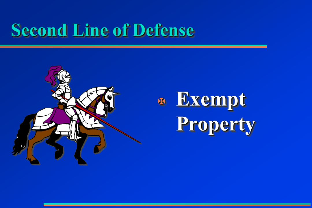 Second Line of Defense X Exempt Property