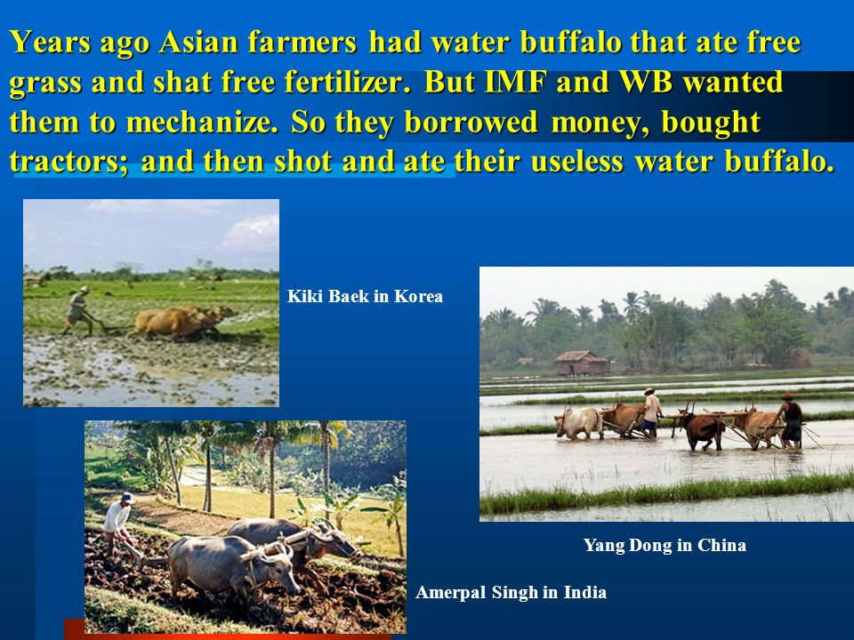 Years ago Asian farmers had water buffalo that ate free grass and shat free fertilizer. But IMF and WB wanted them to mechanize. So they borrowed mone