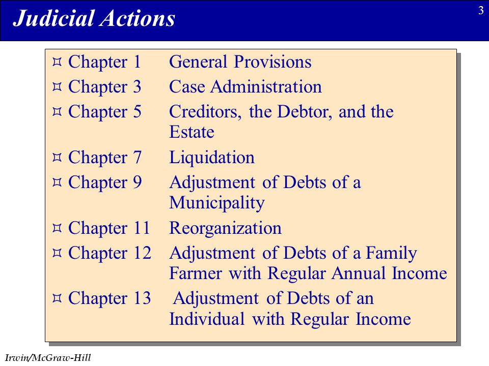 Irwin/McGraw-Hill 3  Chapter 1General Provisions  Chapter 3Case Administration  Chapter 5Creditors, the Debtor, and the Estate  Chapter 7Liquidation  Chapter 9Adjustment of Debts of a Municipality  Chapter 11Reorganization  Chapter 12Adjustment of Debts of a Family Farmer with Regular Annual Income  Chapter 13 Adjustment of Debts of an Individual with Regular Income  Chapter 1General Provisions  Chapter 3Case Administration  Chapter 5Creditors, the Debtor, and the Estate  Chapter 7Liquidation  Chapter 9Adjustment of Debts of a Municipality  Chapter 11Reorganization  Chapter 12Adjustment of Debts of a Family Farmer with Regular Annual Income  Chapter 13 Adjustment of Debts of an Individual with Regular Income Judicial Actions