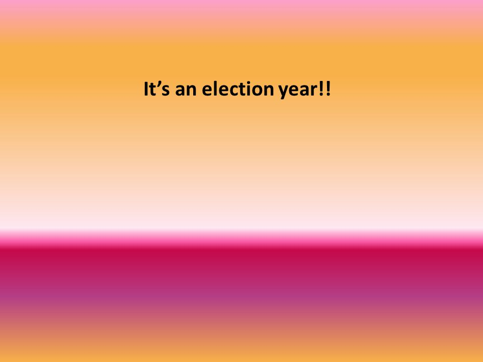 It's an election year!!