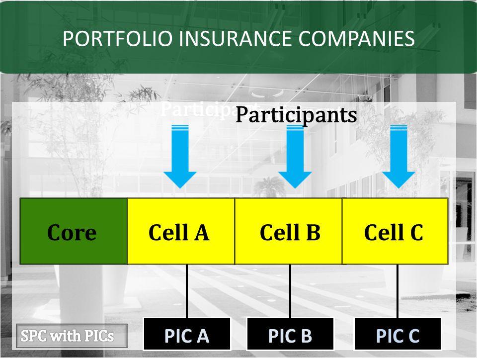 PORTFOLIO INSURANCE COMPANIES PIC APIC BPIC C Core Participant Cell ACell BCell C Participants