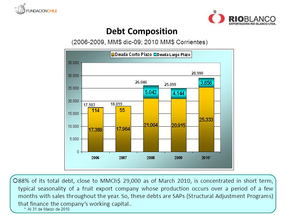 17.503 18.019 26.046 25.059 28.990 Debt Composition (2006-2009, MM$ dic-09; 2010 MM$ Corrientes)  88% of its total debt, close to MMCh$ 29,000 as of