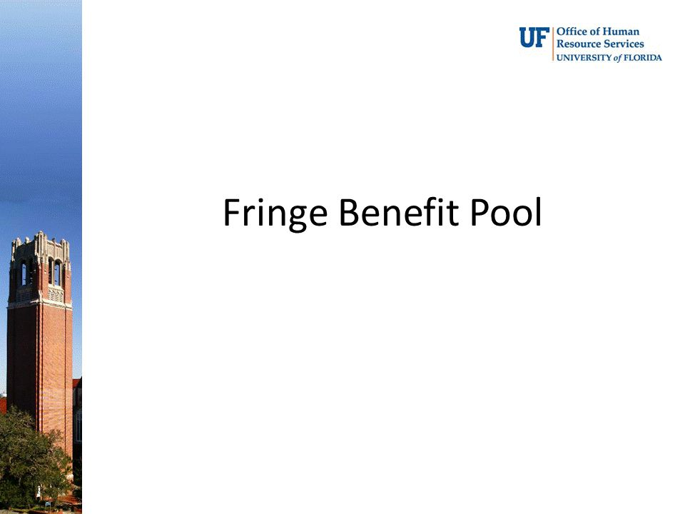 Fringe Benefit Pool