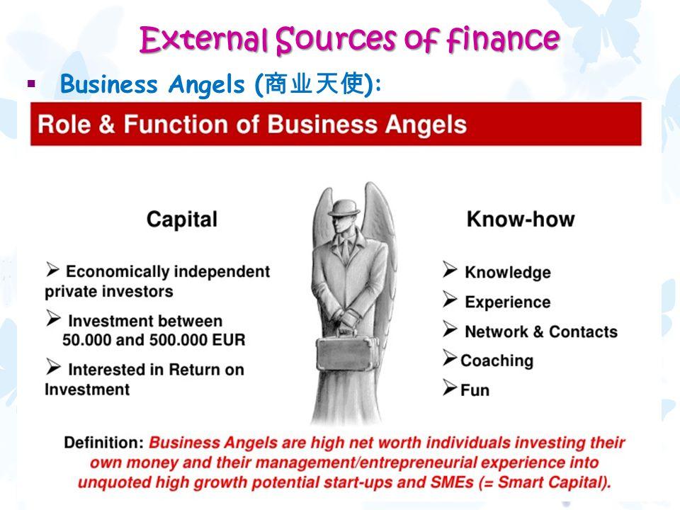  Business Angels ( 商业天使 ): 32 External Sources of finance External Sources of finance