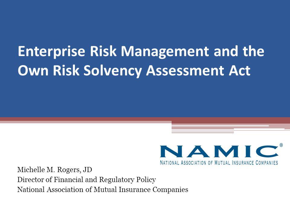 Discussion Topics Enterprise Risk Management ORSA Enterprise Risk Reports International Connection