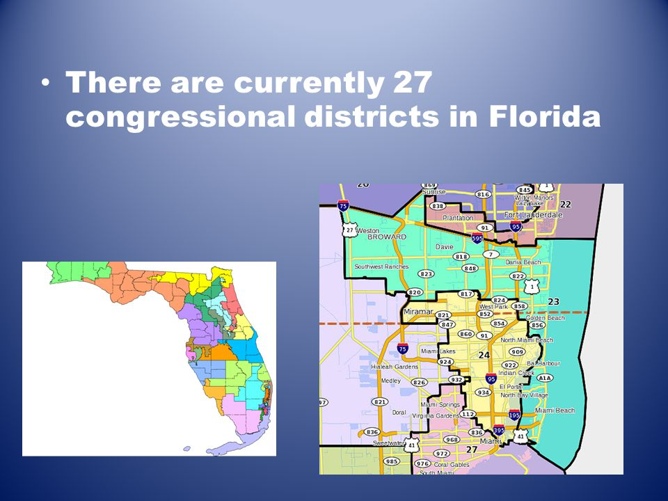 There are currently 27 congressional districts in Florida
