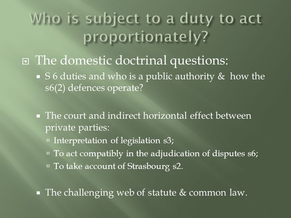  The domestic doctrinal questions:  S 6 duties and who is a public authority & how the s6(2) defences operate.