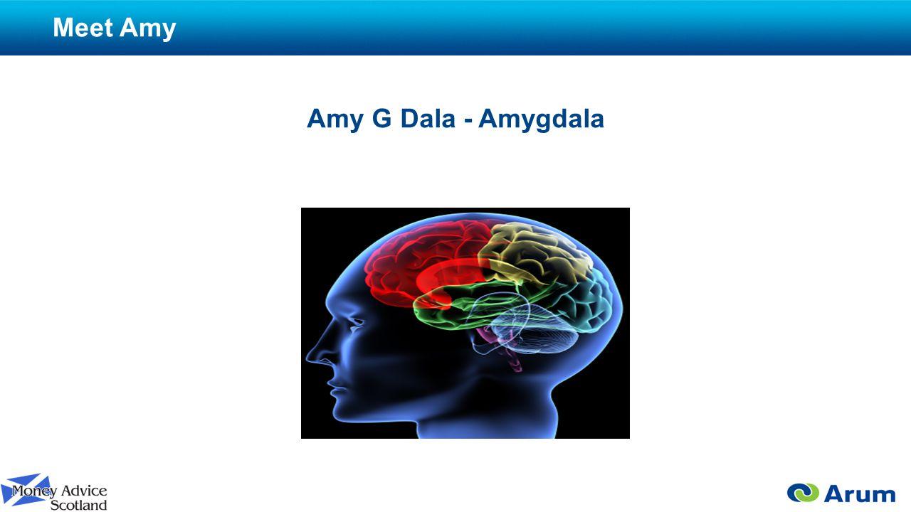 Meet Amy Amy G Dala - Amygdala