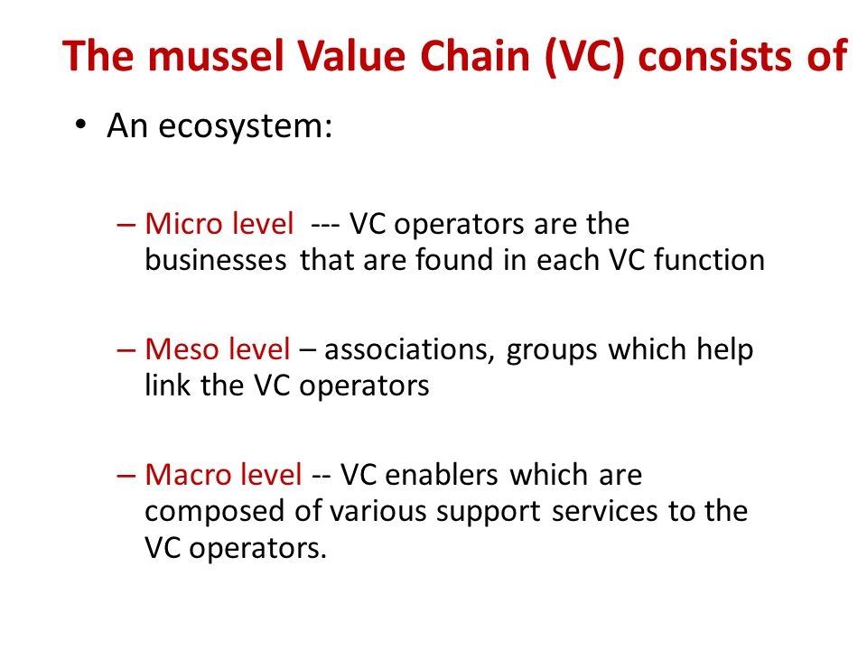 The mussel Value Chain (VC) consists of An ecosystem: – Micro level --- VC operators are the businesses that are found in each VC function – Meso level – associations, groups which help link the VC operators – Macro level -- VC enablers which are composed of various support services to the VC operators.