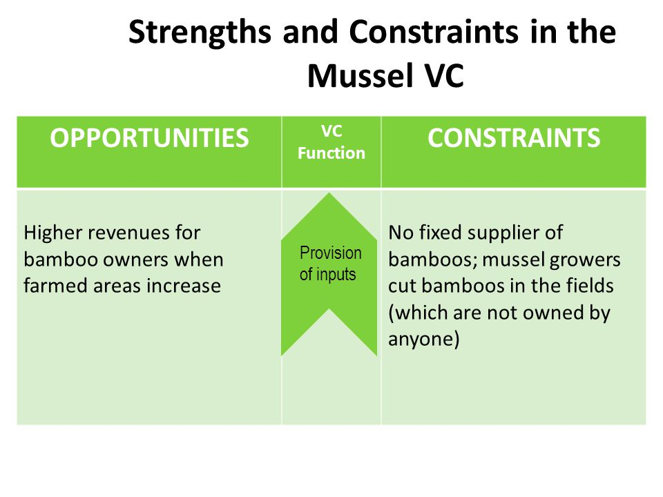 Strengths and Constraints in the Mussel VC OPPORTUNITIES VC Function CONSTRAINTS Higher revenues for bamboo owners when farmed areas increase No fixed supplier of bamboos; mussel growers cut bamboos in the fields (which are not owned by anyone) Provision of inputs