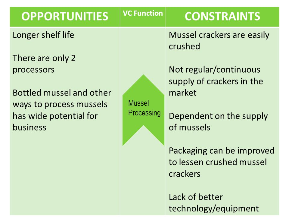 OPPORTUNITIES VC Function CONSTRAINTS Longer shelf life There are only 2 processors Bottled mussel and other ways to process mussels has wide potential for business Mussel crackers are easily crushed Not regular/continuous supply of crackers in the market Dependent on the supply of mussels Packaging can be improved to lessen crushed mussel crackers Lack of better technology/equipment Mussel Processing