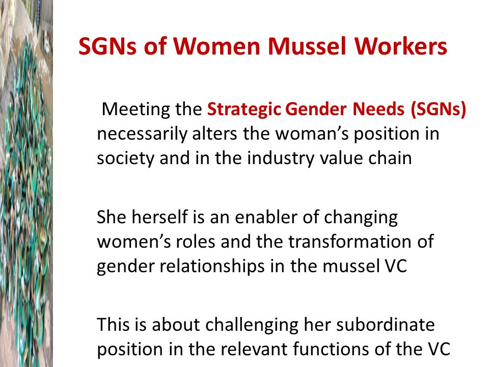SGNs of Women Mussel Workers Meeting the Strategic Gender Needs (SGNs) necessarily alters the woman's position in society and in the industry value chain She herself is an enabler of changing women's roles and the transformation of gender relationships in the mussel VC This is about challenging her subordinate position in the relevant functions of the VC