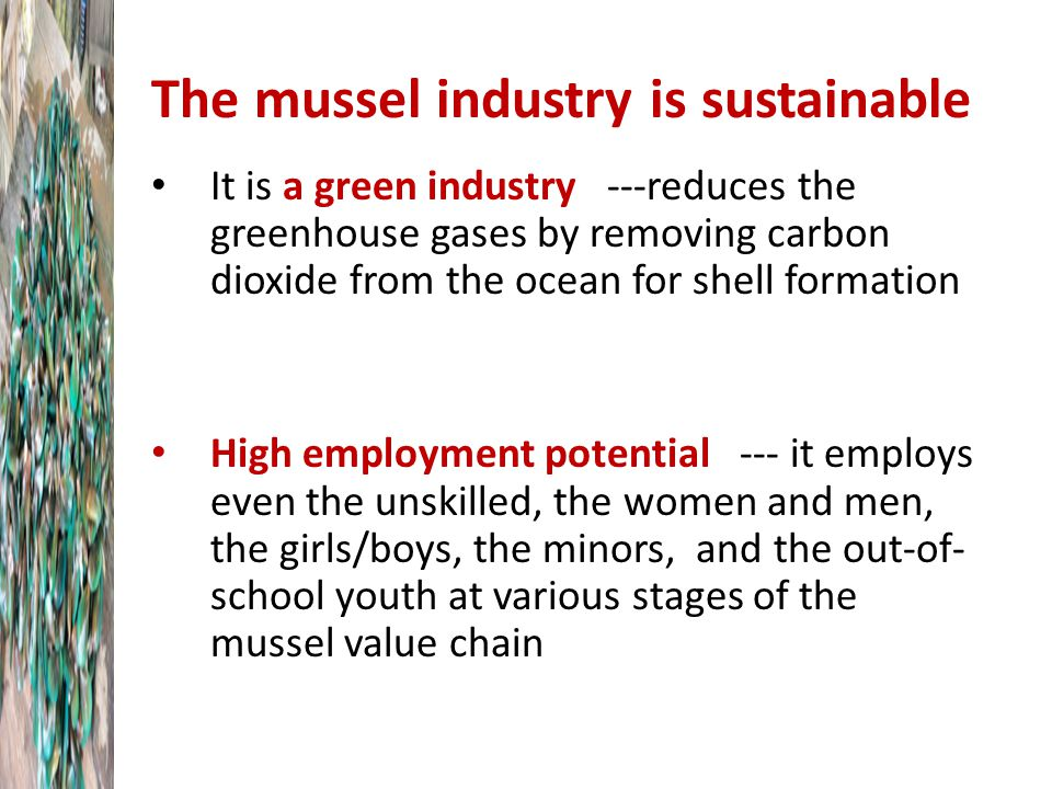 The mussel industry is sustainable It is a green industry ---reduces the greenhouse gases by removing carbon dioxide from the ocean for shell formation High employment potential --- it employs even the unskilled, the women and men, the girls/boys, the minors, and the out-of- school youth at various stages of the mussel value chain