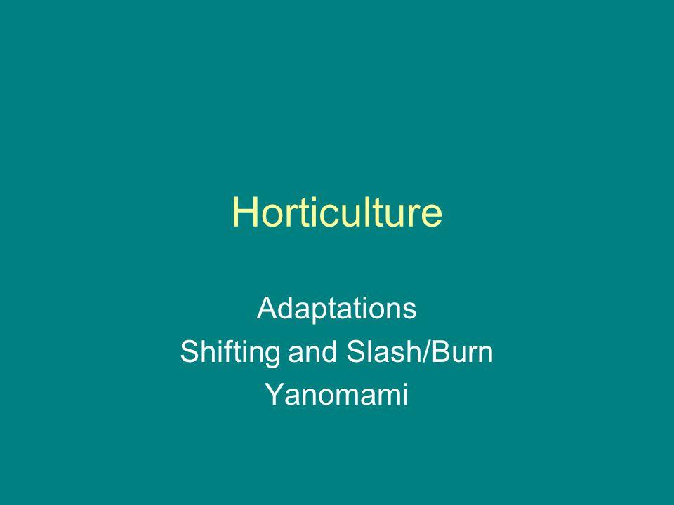 Horticulture Adaptations Shifting and Slash/Burn Yanomami