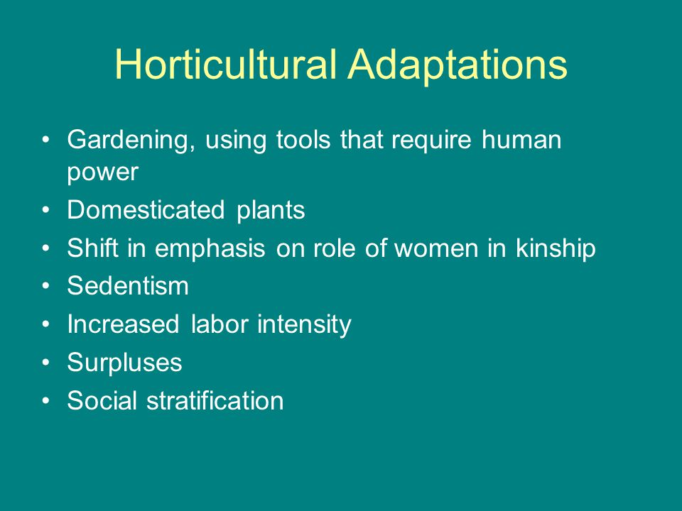 Horticultural Adaptations Gardening, using tools that require human power Domesticated plants Shift in emphasis on role of women in kinship Sedentism Increased labor intensity Surpluses Social stratification