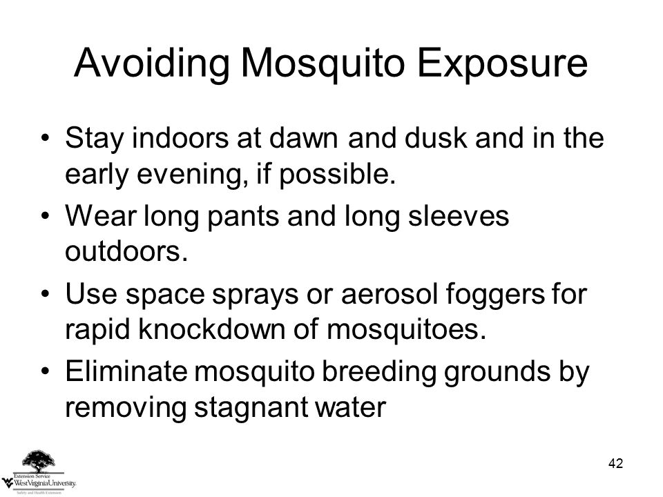 42 Avoiding Mosquito Exposure Stay indoors at dawn and dusk and in the early evening, if possible.