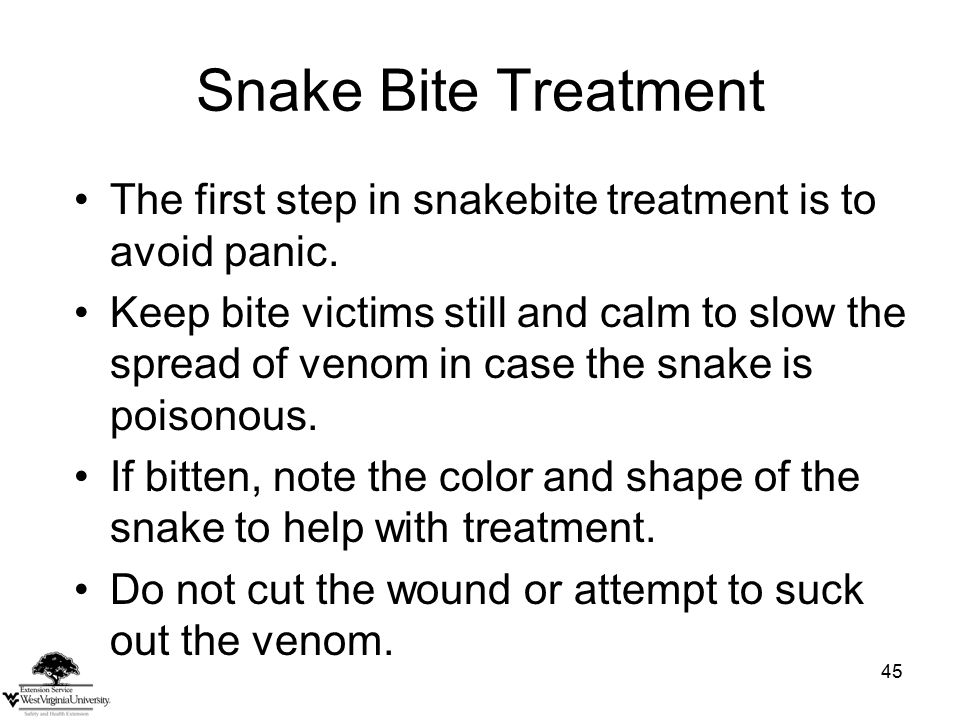 45 Snake Bite Treatment The first step in snakebite treatment is to avoid panic.