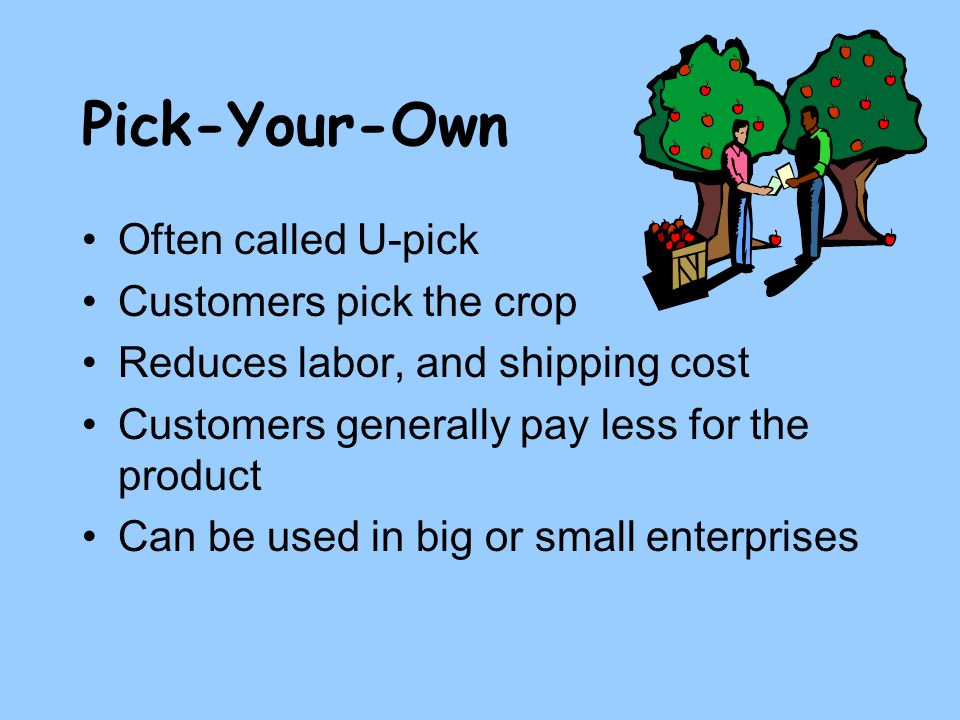 Pick-Your-Own Often called U-pick Customers pick the crop Reduces labor, and shipping cost Customers generally pay less for the product Can be used in big or small enterprises