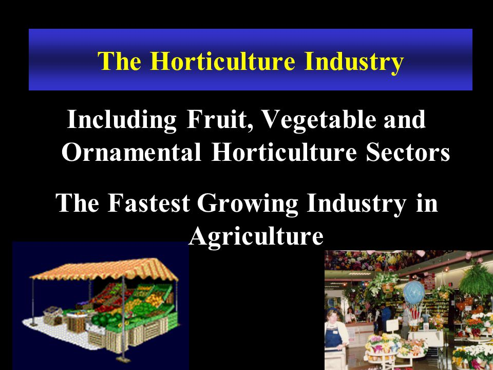 The Horticulture Industry Including Fruit, Vegetable and Ornamental Horticulture Sectors The Fastest Growing Industry in Agriculture