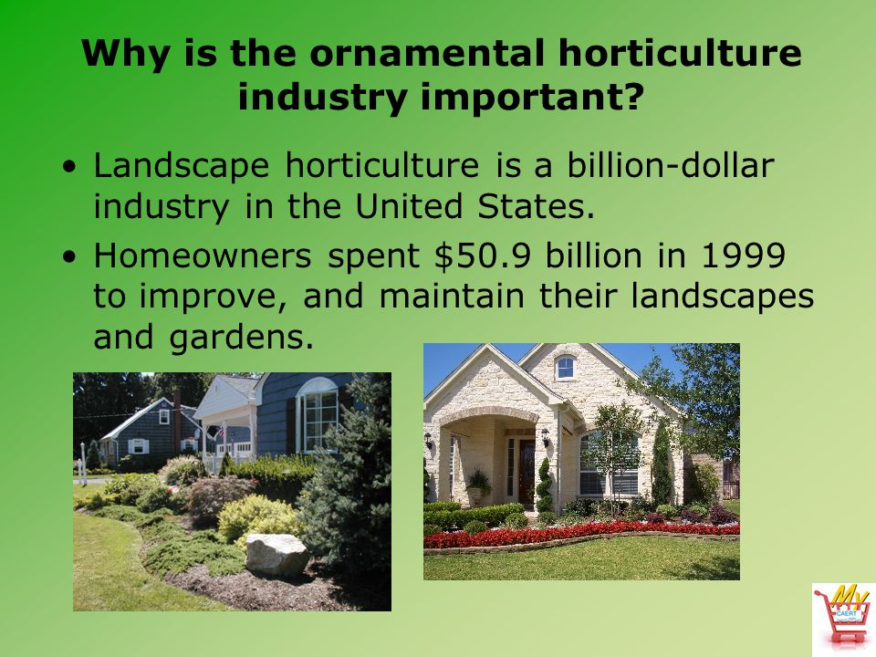 Landscape horticulture is a billion-dollar industry in the United States.