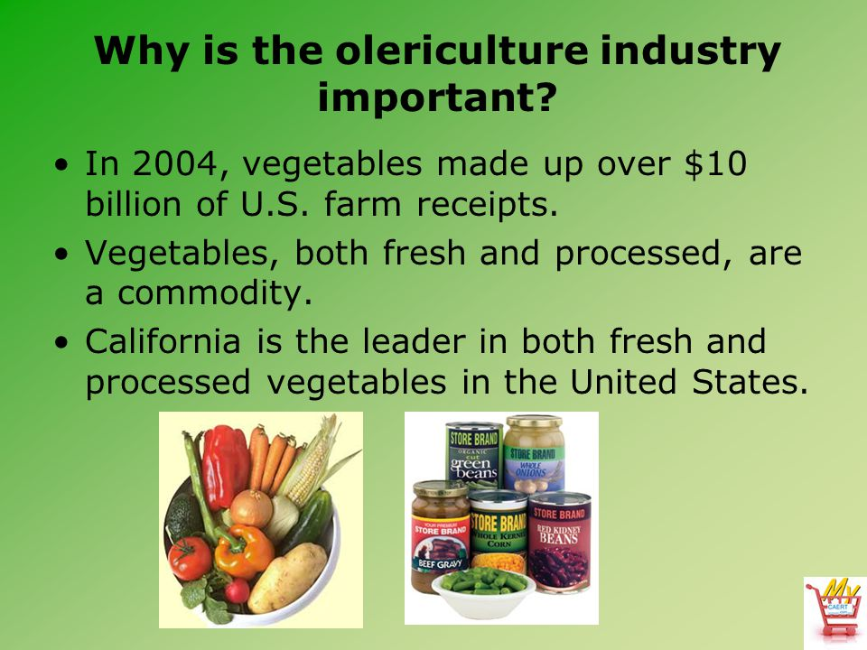 Why is the olericulture industry important.In 2004, vegetables made up over $10 billion of U.S.