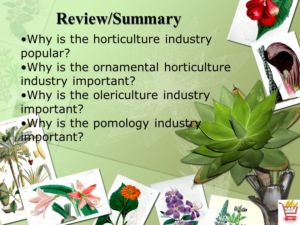 Review/Summary Why is the horticulture industry popular.