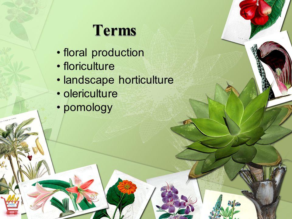 Terms floral production floriculture landscape horticulture olericulture pomology