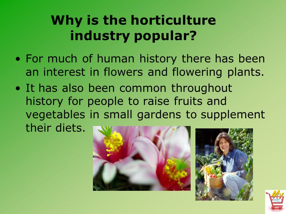 Why is the horticulture industry popular.