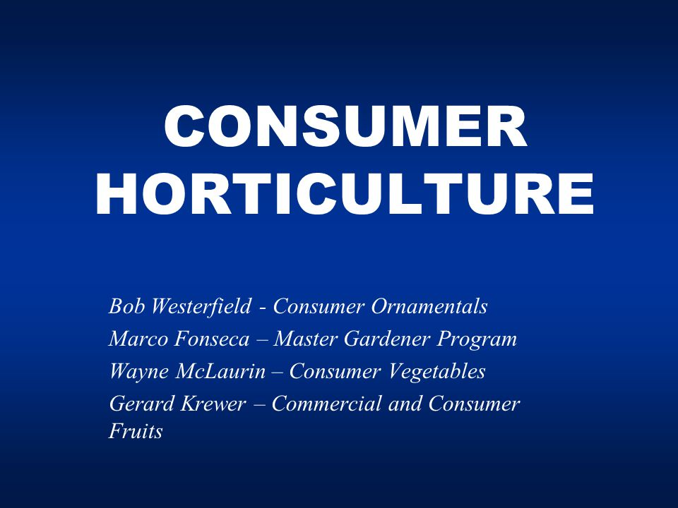 CONSUMER HORTICULTURE Bob Westerfield - Consumer Ornamentals Marco Fonseca – Master Gardener Program Wayne McLaurin – Consumer Vegetables Gerard Krewer – Commercial and Consumer Fruits