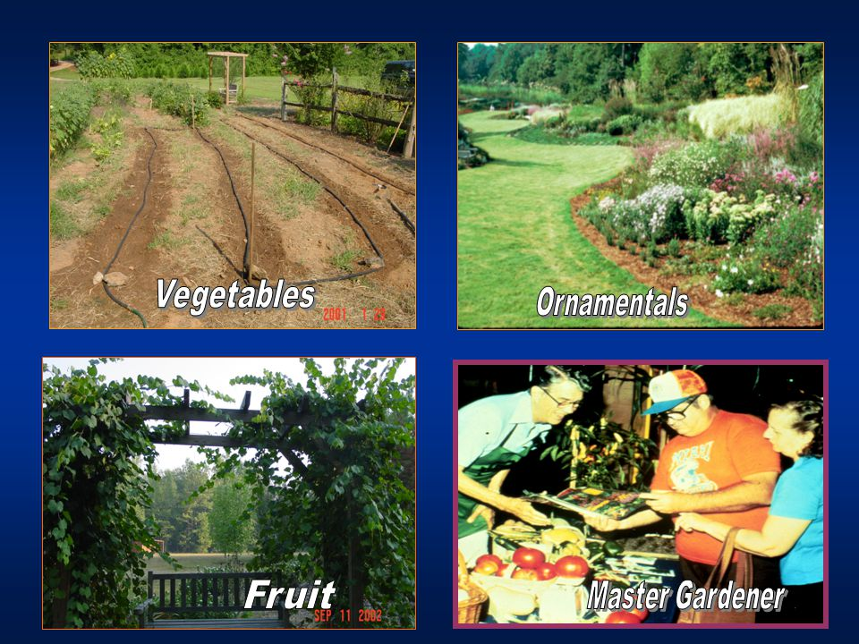 Sample Publications Growing Vegetables Organically Home Vegetable Gardening When to Harvest Vegetables Conserving Water in the Vegetable Garden Herbs in Southern Gardens