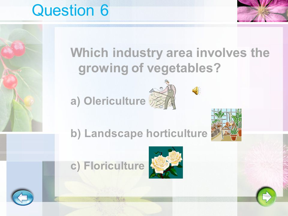 Question 5 Ornamental Horticulture is just one of the three industry areas of horticulture.
