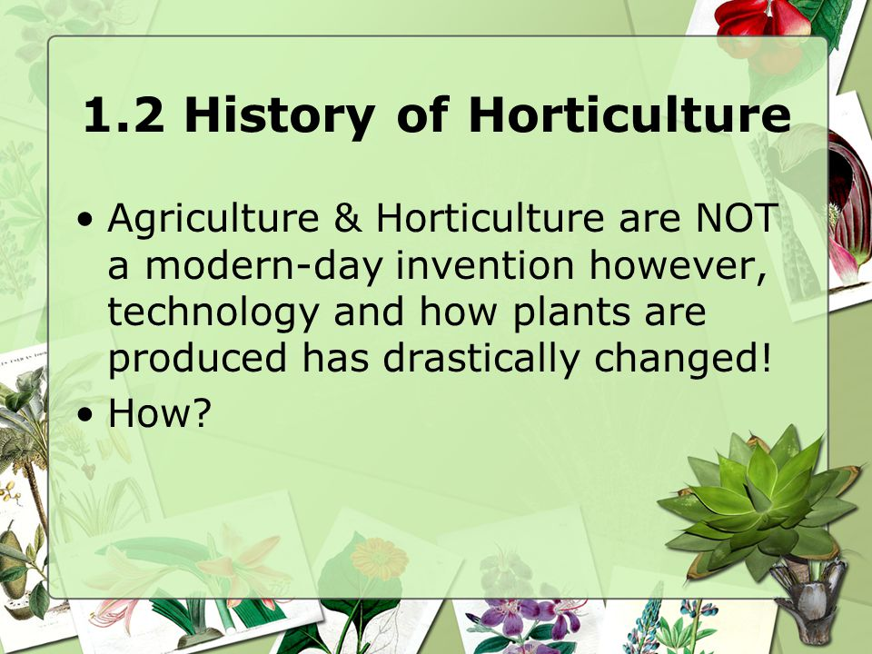 1.3 Divisions of Horticulture.