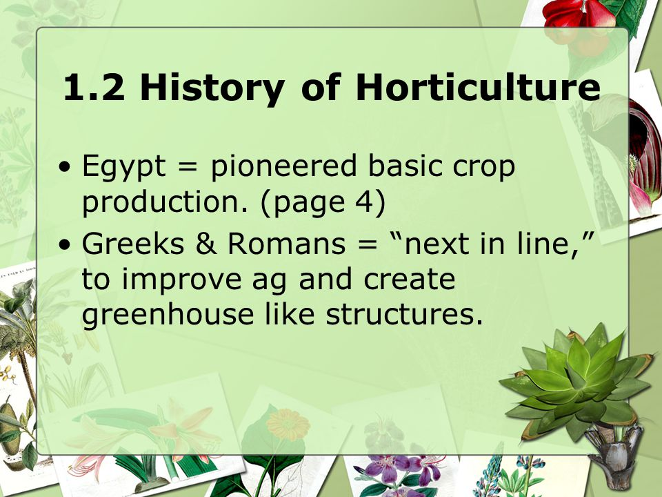 1.2 History of Horticulture United States Contributions: –Robert Prince = 1 st nursery in 1730's –Andrew Downing = landscaping –Frederick Law Olmstead 1822 = father of landscape architecture –Page 14