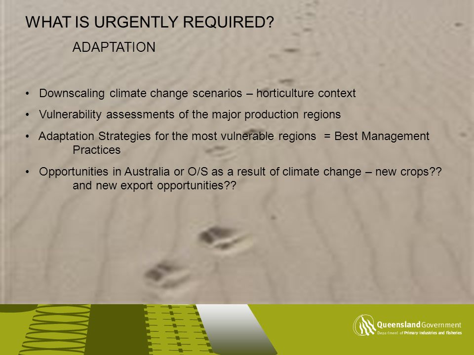 This is the lime title master slide WHAT IS URGENTLY REQUIRED? ADAPTATION Downscaling climate change scenarios – horticulture context Vulnerability as