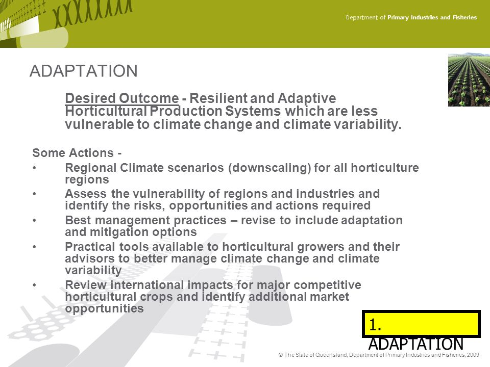© The State of Queensland, Department of Primary Industries and Fisheries, 2009 Desired Outcome - Resilient and Adaptive Horticultural Production Syst