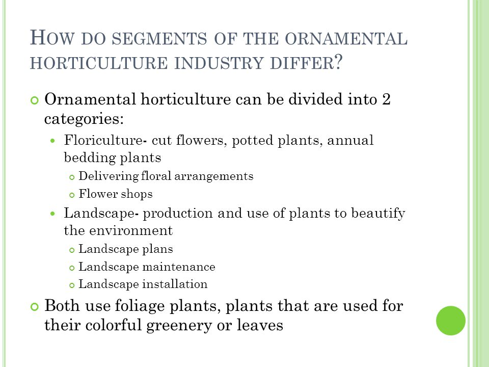 Ornamental horticulture can be divided into 2 categories: Floriculture- cut flowers, potted plants, annual bedding plants Delivering floral arrangements Flower shops Landscape- production and use of plants to beautify the environment Landscape plans Landscape maintenance Landscape installation Both use foliage plants, plants that are used for their colorful greenery or leaves