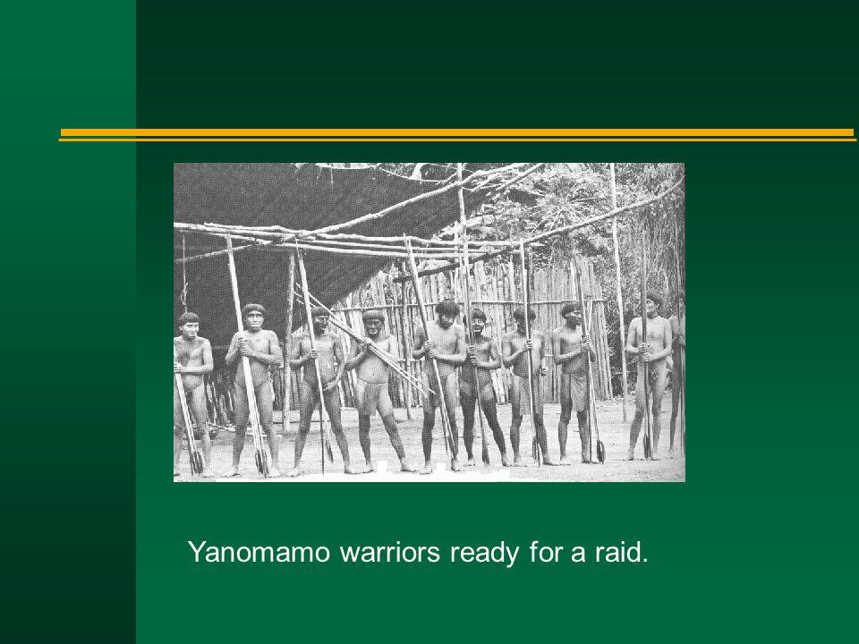Yanomamo warriors ready for a raid.