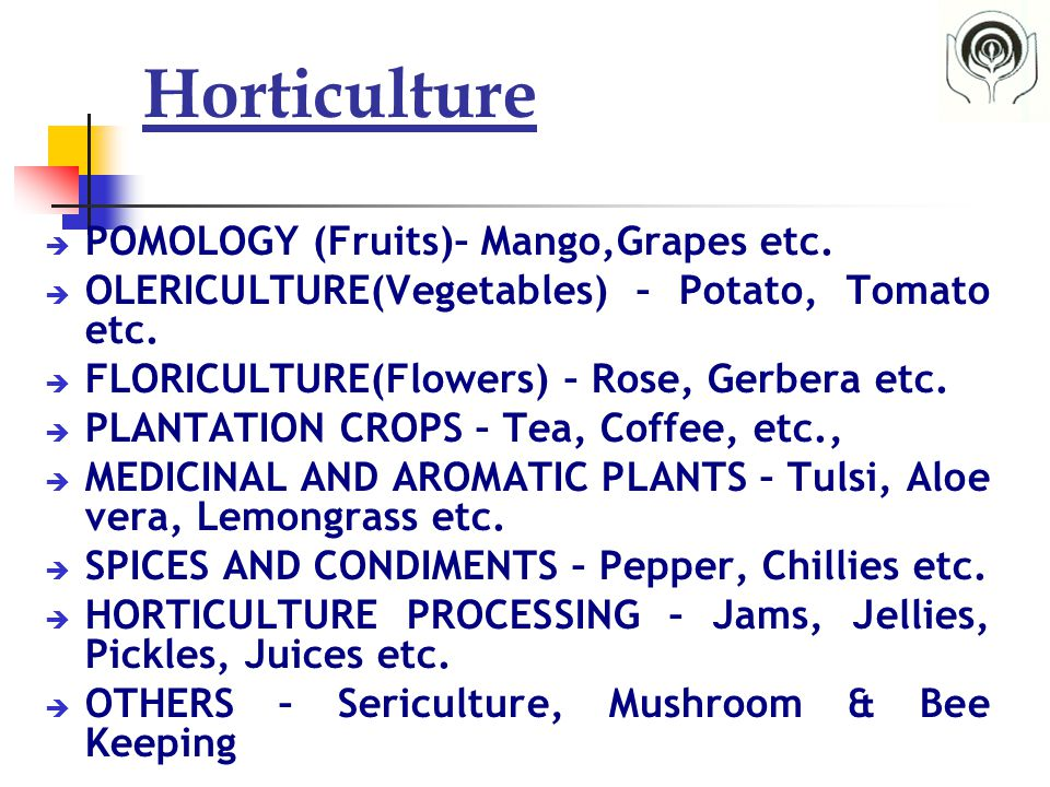 Horticulture  POMOLOGY (Fruits)– Mango,Grapes etc.  OLERICULTURE(Vegetables) – Potato, Tomato etc.  FLORICULTURE(Flowers) – Rose, Gerbera etc.  PL