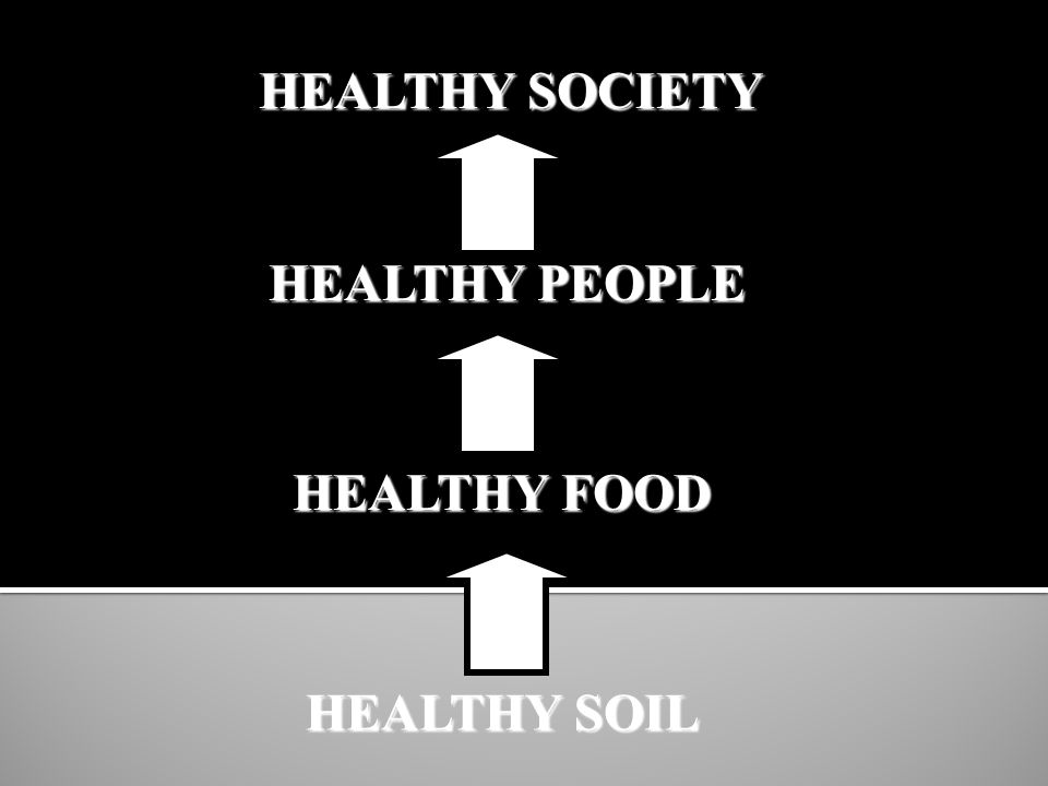HEALTHY SOIL HEALTHY FOOD HEALTHY PEOPLE HEALTHY SOCIETY